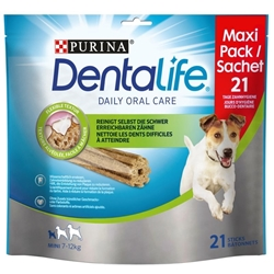 Picture of Purina Dentalife Snacks Mini for small dogs